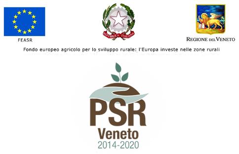 fondo europeo agricolo per lo sviluppo rurale frutti del pozzeolo vestenanova verona.